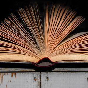 Books_Hintergrund